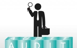 auditing taxpayers